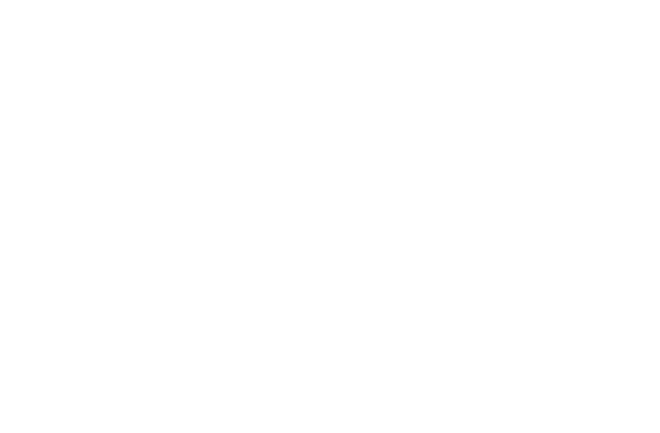 webEDGE is a Microsoft Partner